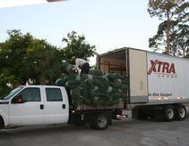 The Champion Bermuda grass arrives early and is loaded onto a truck to take out on the course.